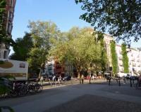 Blick auf die Kreuzung Kollwitzstraße-Sredzkistraße